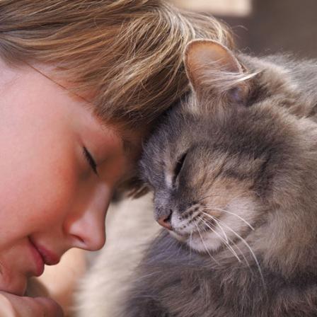 Inkstų ligos pakerta kas trečią katę: priežastis gali būti netgi gėlės ir uogos