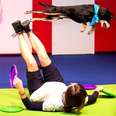 Joga su šunimi: šeimininkas sportuoja, augintinis atsipalaiduoja