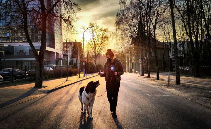 Kaniterapija: šuns pagalba tiems, kuriems gyventi darosi sunku